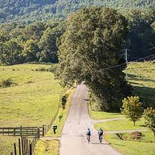 Biking Smoky Mountains with DuVine