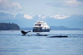 UnCruise Alaska