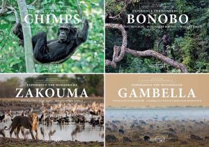 Trips to Unexplored Africa
